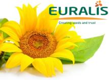 tonnaplus_sunflower_euralis